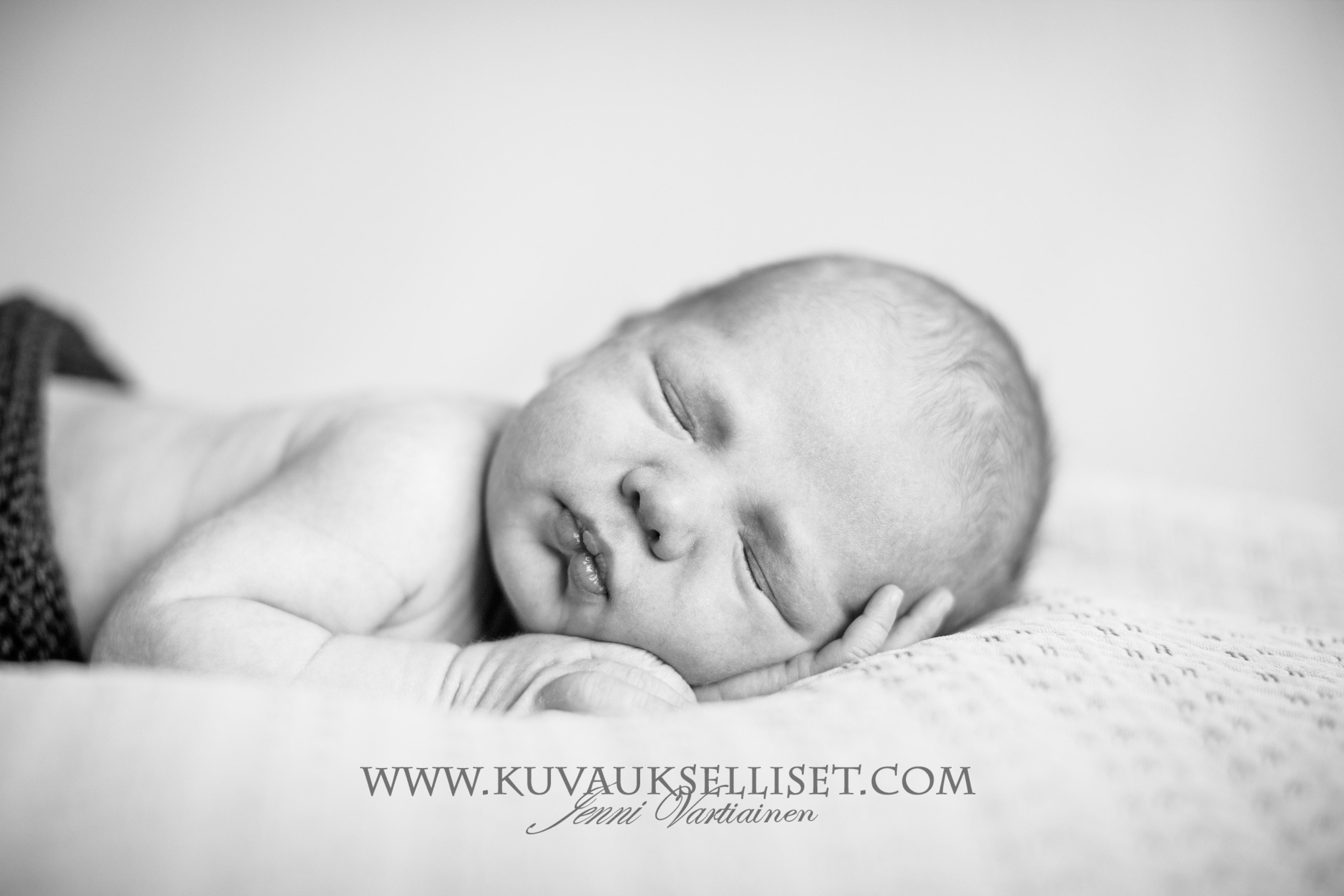2015.3.15 vastasyntyneen kuvaus jenni vartiainen vauvakuvaus new born photography  bw logo-1